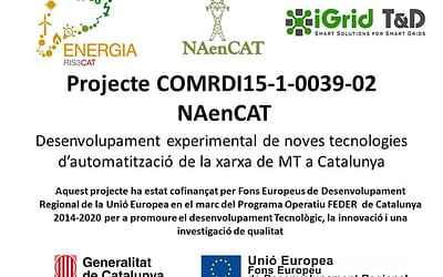 NAenCAT project: new technologies on the secondary medium voltage grid